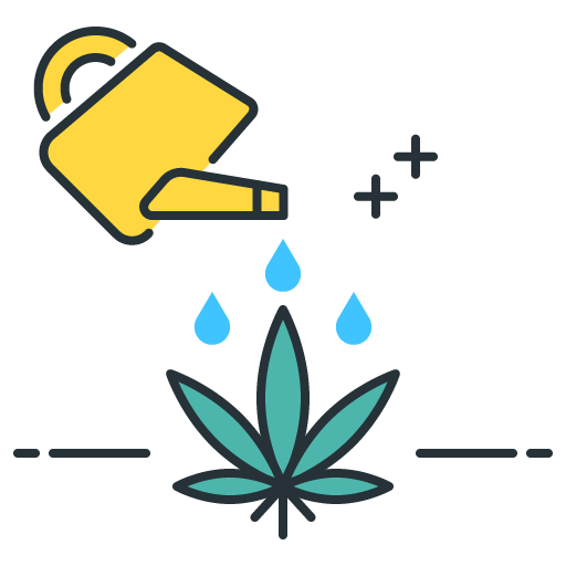 A business woman sitting at her desk, smiling while working