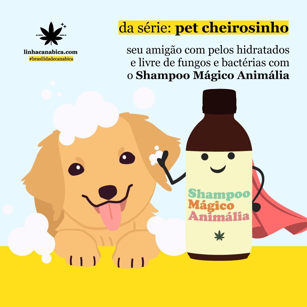 Shampoo CBD para Pet