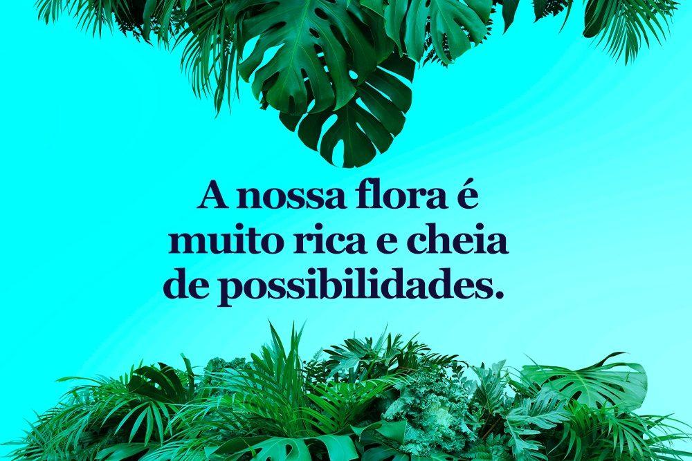 flora-brasileira-cannabis