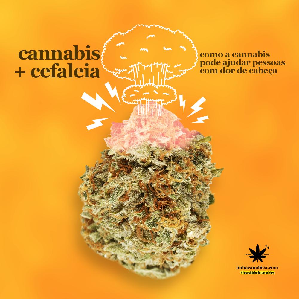 Cannabis-e-Cefaleia-maconha-ajuda-a-tratar-dores-de-cabeca