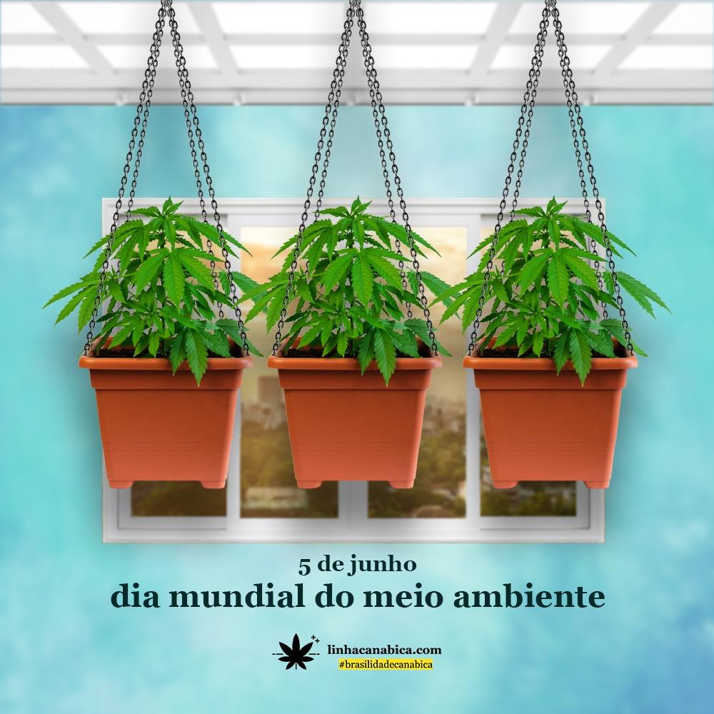 dia-mundial-do-meio-ambiente-cannabis